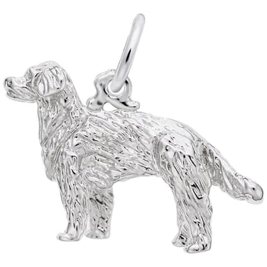 "Rembrandt ""Golden Retriever"" Charm"