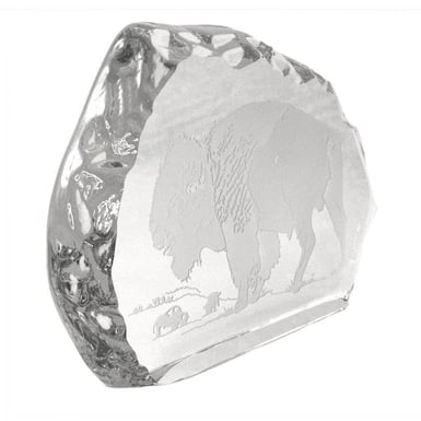 Buffalo Ice Block